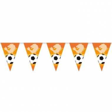 Oranje vlaggenlijnen voetbal 6 m