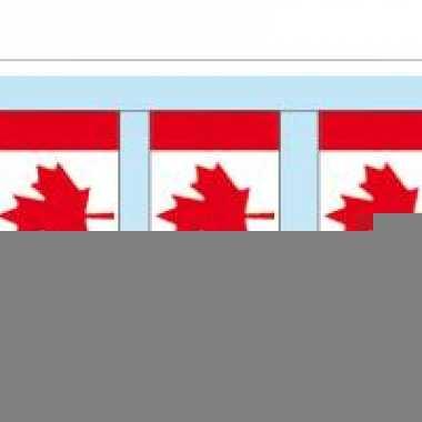 Papieren vlaggenlijnen canada