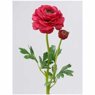 Ranonkel rood/roze 51 cm met 1 open bloem