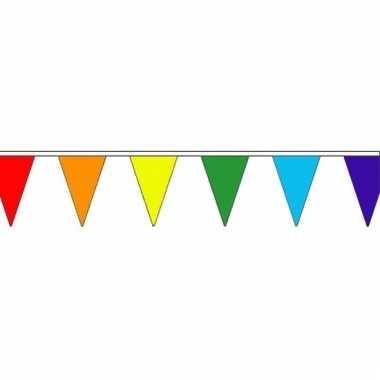 Regenboog versiering vlaggenlijn 5 m