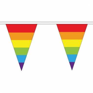 Regenboog versiering vlaggetjes 20 m
