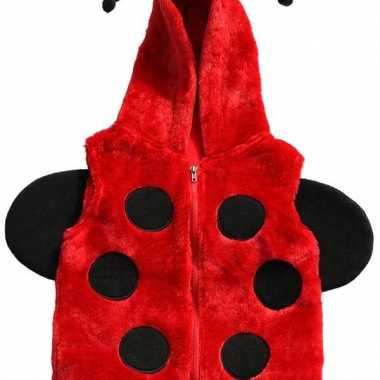 Rode bodywarmer lieveheersbeestje