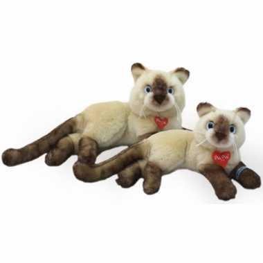 Siamese katten/poezen knuffel 30 cm