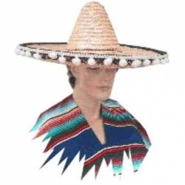 Sombrero hoed groot