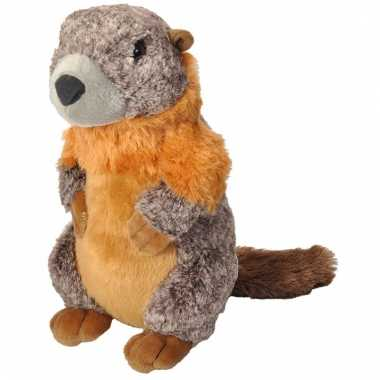 Speelgoed marmot knuffel 30 cm