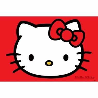 Themafeest hello kitty poster 61 x 91,5 cm