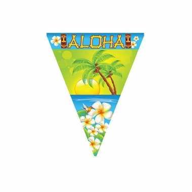 Tropical vlaggenlijn aloha 5 meter