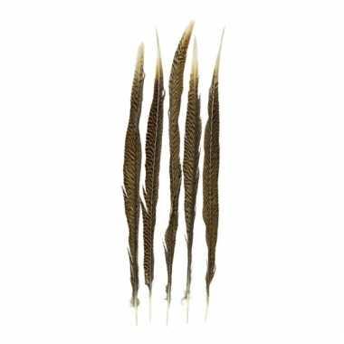 Veertjes goudfazant 50 cm 5 stuks