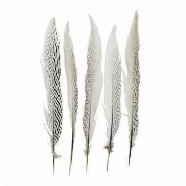Veertjes zilver fazant 38 cm