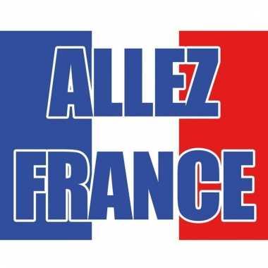 Vlag frankrijk allez france
