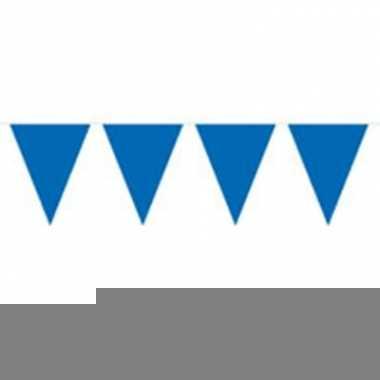 Vlaggenlijn effen blauw 10 meter