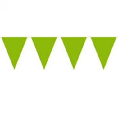 Vlaggenlijn effen groen 10 meter