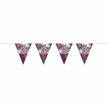 Vlaggenlijn voor 16de verjaardag 10 meter