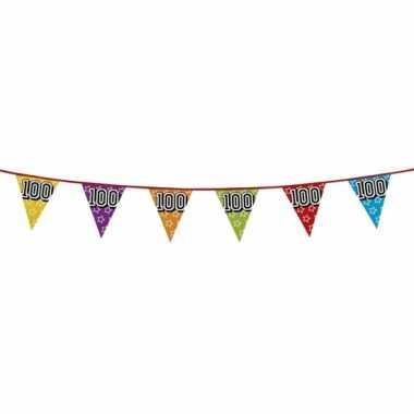 Vlaggetjes 100 jaar feestje