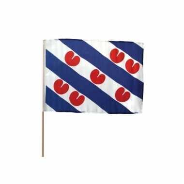 Zwaaivlaggen friesland groot 10 stuks