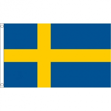 Zweedse mega vlag 150 x 240 cm