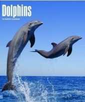 2018 kalender met dolfijnen