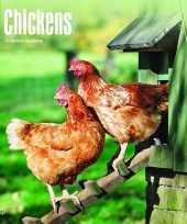 2018 kalender met kippen