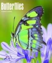 2018 kalender met vlinders