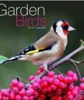 2018 kalender met vogels