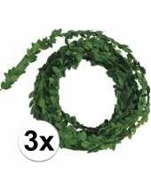 5 meter lange buxus slinger 3x