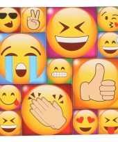 Afgeprijsde 13x koelkast magneten emoji smileys emoticons type 1