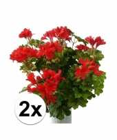Afgeprijsde 2 stuks rode kunst geranium plant 40 cm