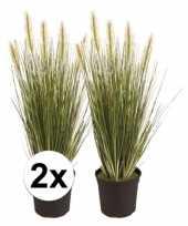 Afgeprijsde 2x grasplant nep 55 cm groen in pot