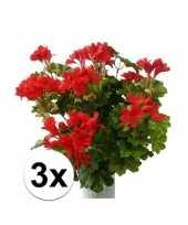 Afgeprijsde 3 stuks rode kunst geranium plant 40 cm