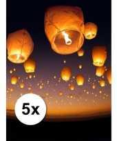 Afgeprijsde 5 grote witte wensballonnen 50 x 100 cm