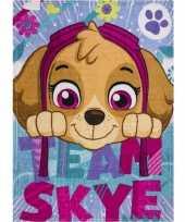 Afgeprijsde fleece deken paw patrol honden voor meisjes
