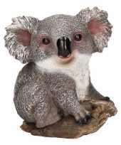 Afgeprijsde koala huiskamer beeldje 20 cm