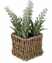 Afgeprijsde kunstplant witte lavendel in rieten mandje 19 cm