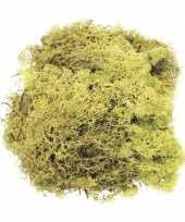 Afgeprijsde lichtgroene mos natuurlijk materiaal 50 gram