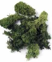 Afgeprijsde zakjes met donkergroene mos