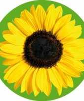 Bierviltjes met bloem zonnebloem 10 st