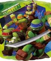 Folie ballonnen ninja turtles 43 cm