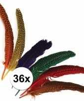 Gestipte veren in verschillende kleuren 10100519