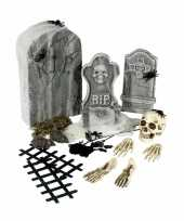 Halloween kerkhof set 24 delig