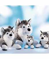 Hondenknuffel husky 24 cm