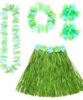 Tropische dames hawaii verkleedset