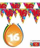 Voordeelverpakking 16 jaar met 2 slingers en ballonnen