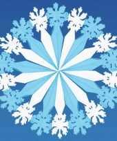 Winter decoratie sneeuwvlok