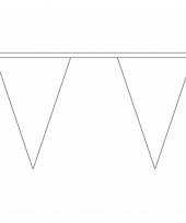 Witte versiering vlaggenlijn 5 m